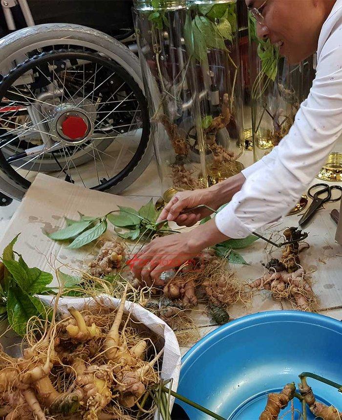 Sâm Ngọc Linh trồng loại 1 (1,3 - 2 lạng/củ), 10 – 20 năm tuổi, 4 đến 7củ /kg) NS180 6