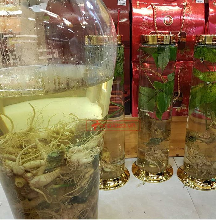 Sâm Ngọc Linh trồng loại 1 (1,3 - 2 lạng/củ), 10 – 20 năm tuổi, 4 đến 7củ /kg) NS180 8